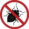 Как избавиться от тараканов?