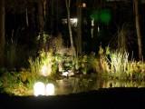 Какое бывает освещение для пруда?