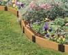 Клумба непрерывного цветения — это просто!